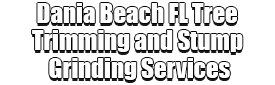 Dania Beach FL Tree Trimming and Stump Grinding Services Logo-We Offer Tree Trimming Services, Tree Removal, Tree Pruning, Tree Cutting, Residential and Commercial Tree Trimming Services, Storm Damage, Emergency Tree Removal, Land Clearing, Tree Companies, Tree Care Service, Stump Grinding, and we're the Best Tree Trimming Company Near You Guaranteed!